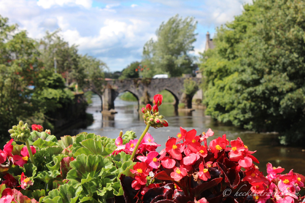 Trim, Ireland Flowers on a Bridge