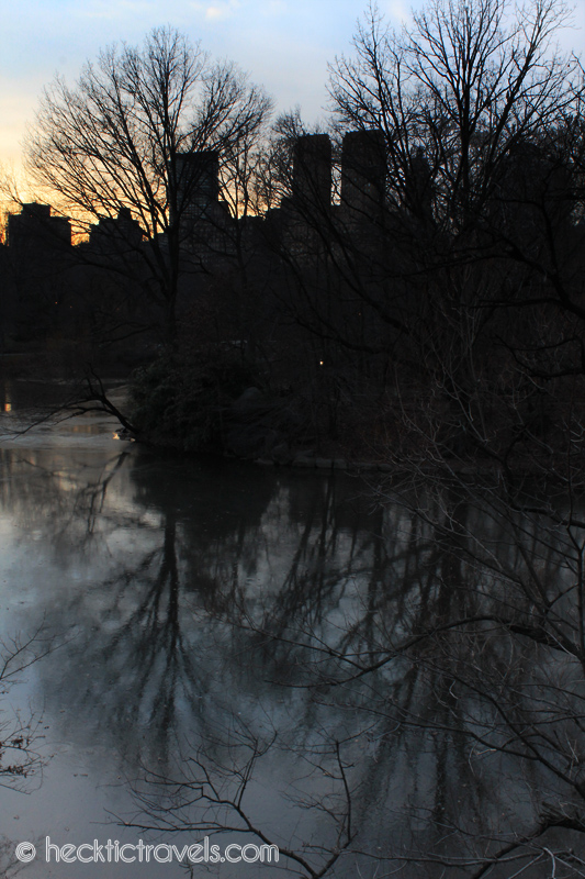 Reflections in Central Park