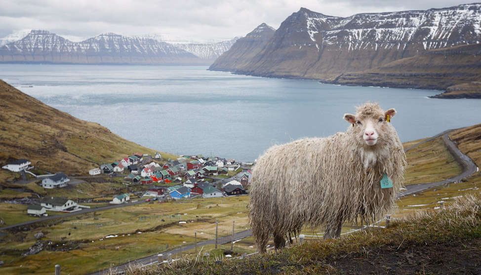 Faroe Postcards – Thumb