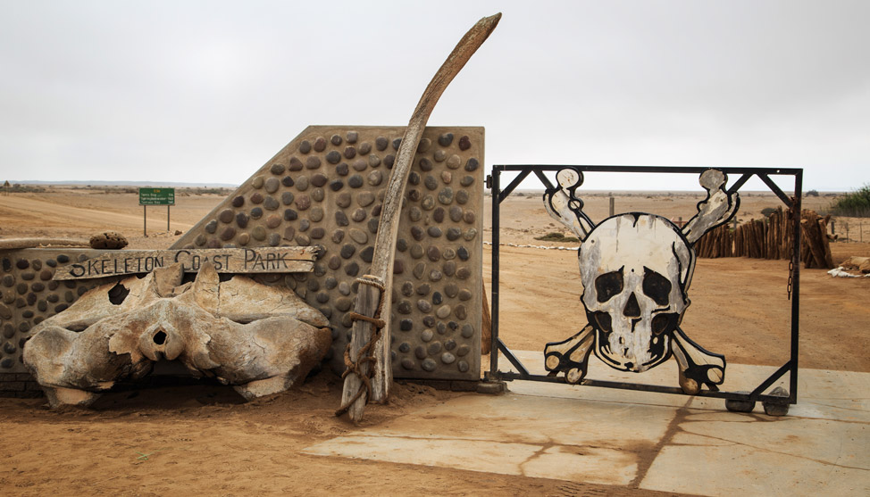 Skeleton Coast Thumbnail