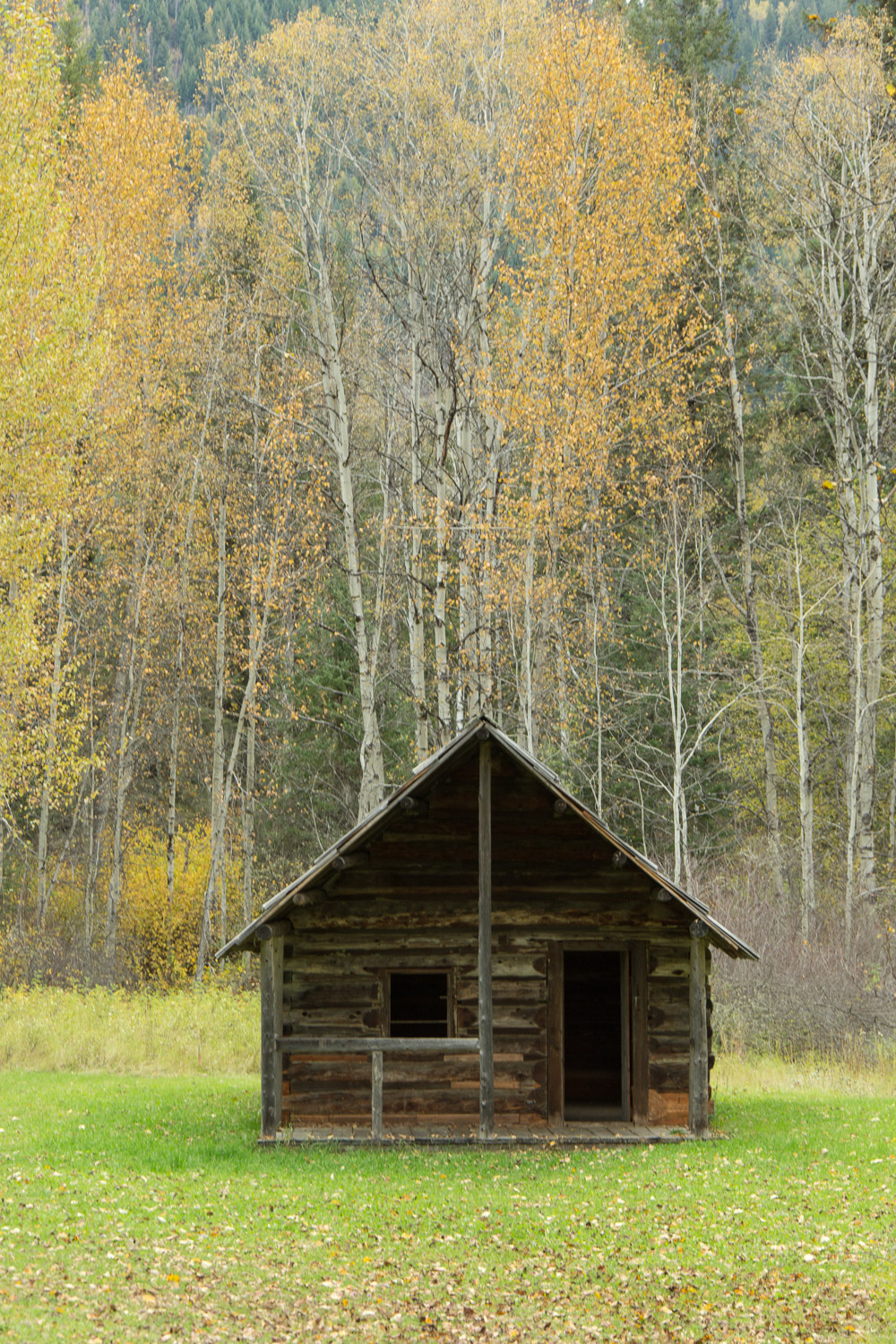 Quesnel Forks, BC - Ghost Town