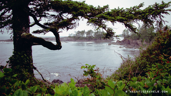 Vancouver Island - Outside Ucluelet