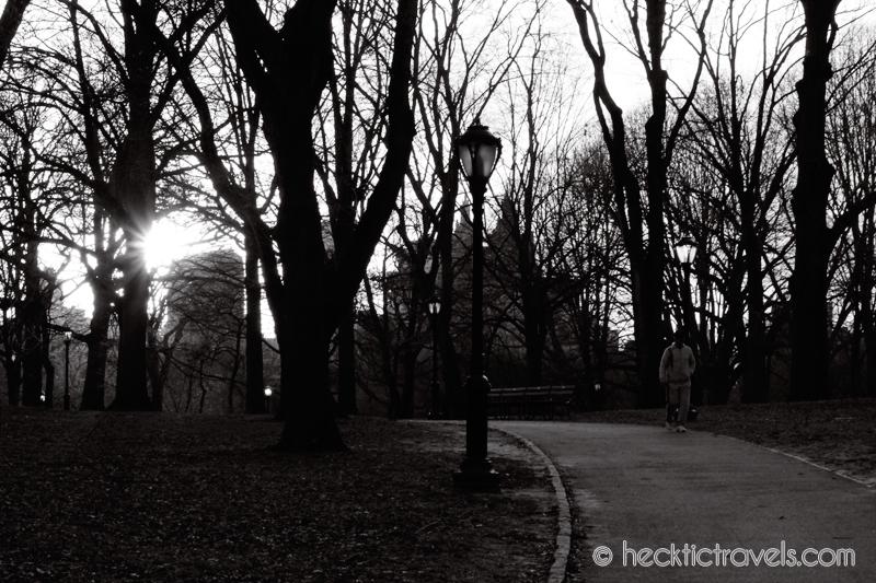 The Sun Peeks Through in Central Park