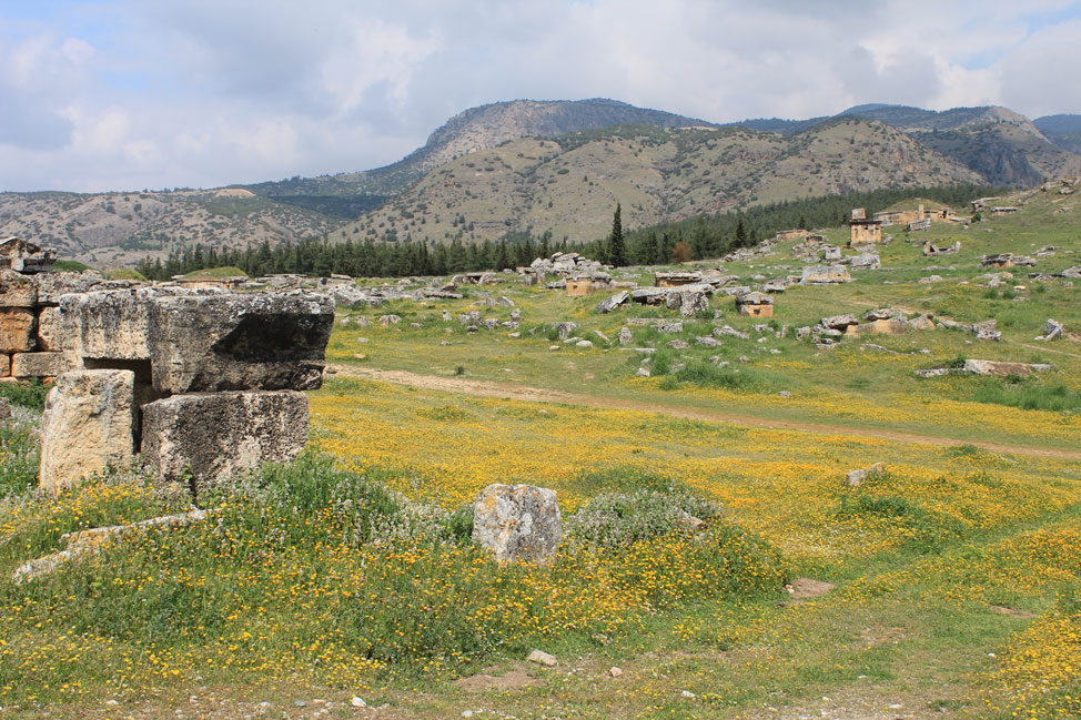 The field of Hierapolis