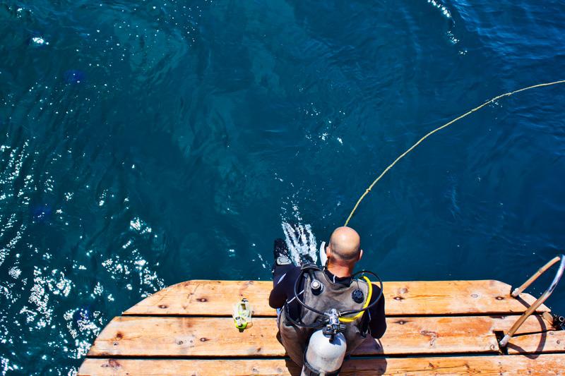 Diver in Aqaba