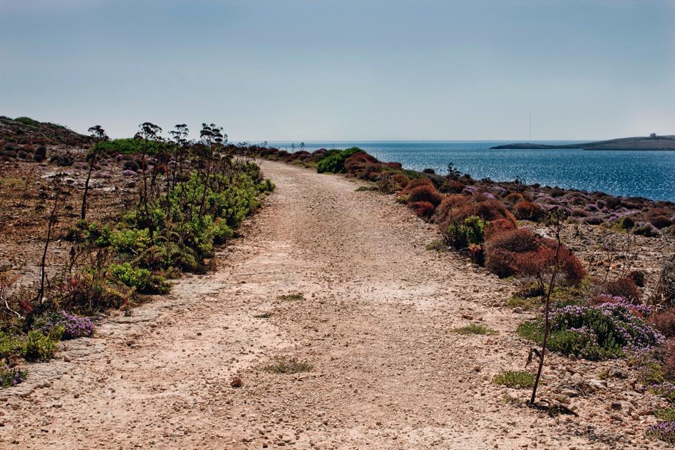 Comino-Malta-Path-974x649