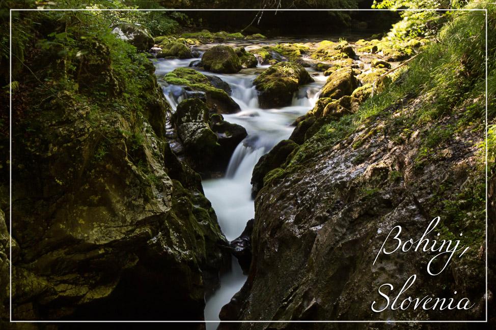 Bohinj-Slovenia
