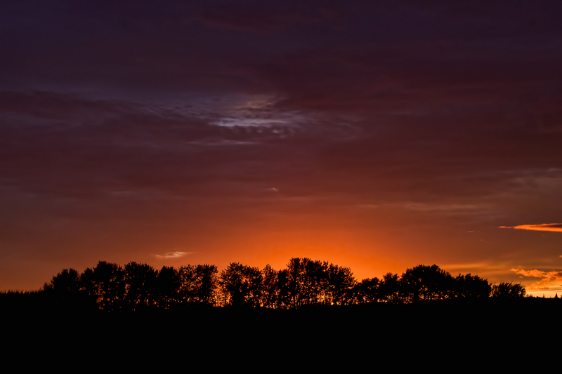 Alberta Sunset-4_800x533