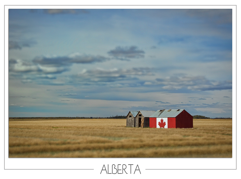 Alberta Patriotic