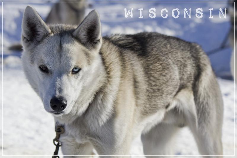 Wisconsin Postcards-006