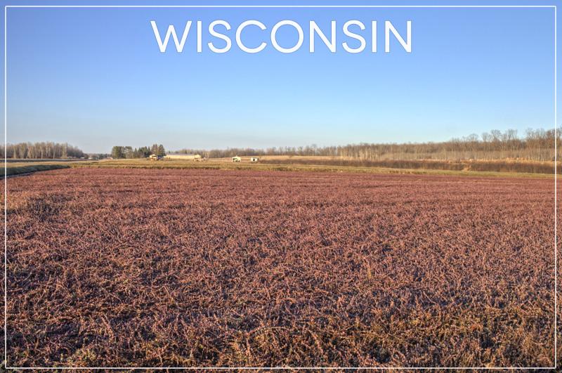 Wisconsin Postcards-011