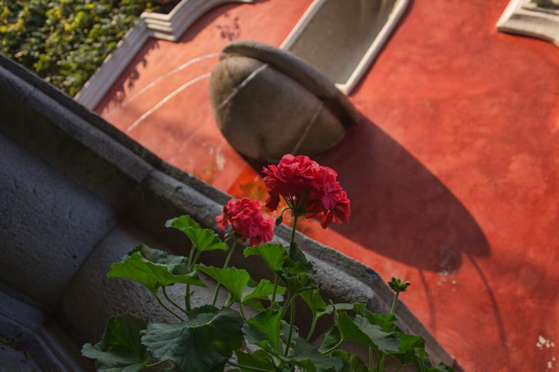 Hotel Meson de Valle Antigua - Fountain