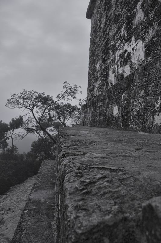 View from Temple 4 at Tikal