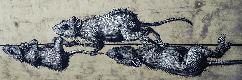 Berlin Street Art - Rats