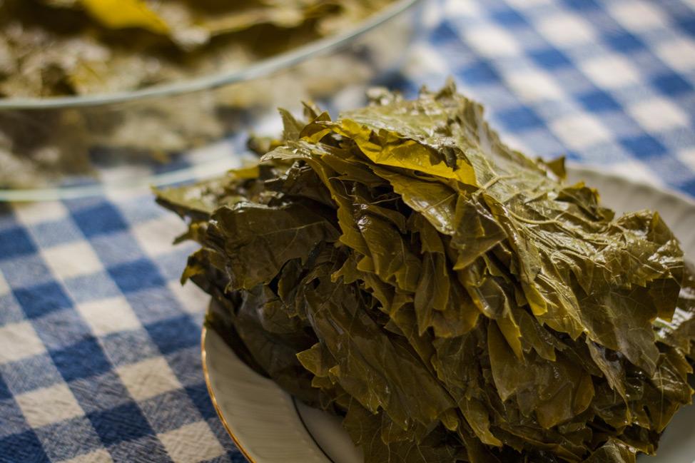 Turkish Food - Vine Leaves
