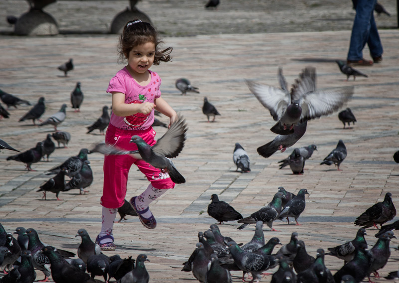 Chasing Pigeons in Izmir