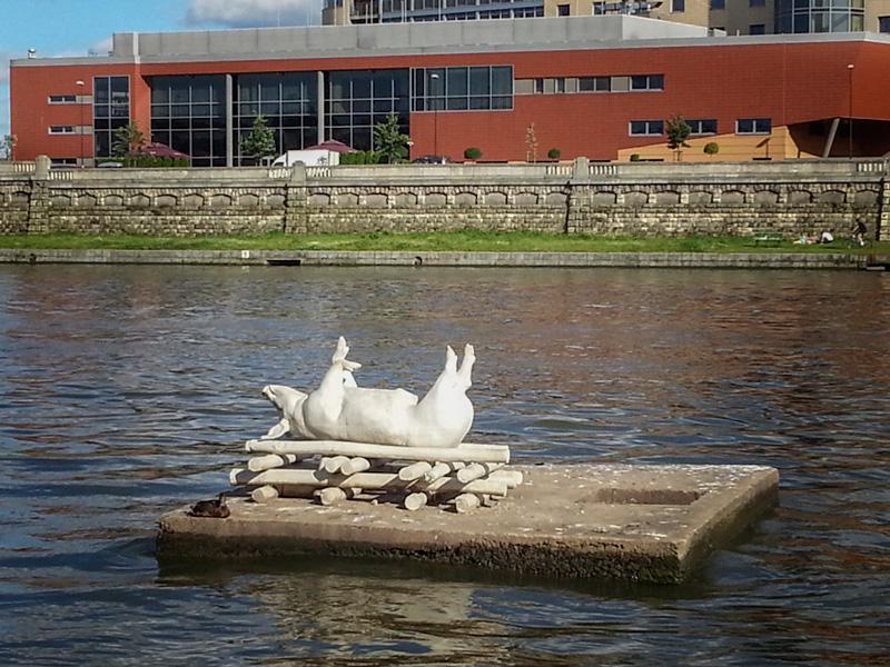 Floating Pig Krakow