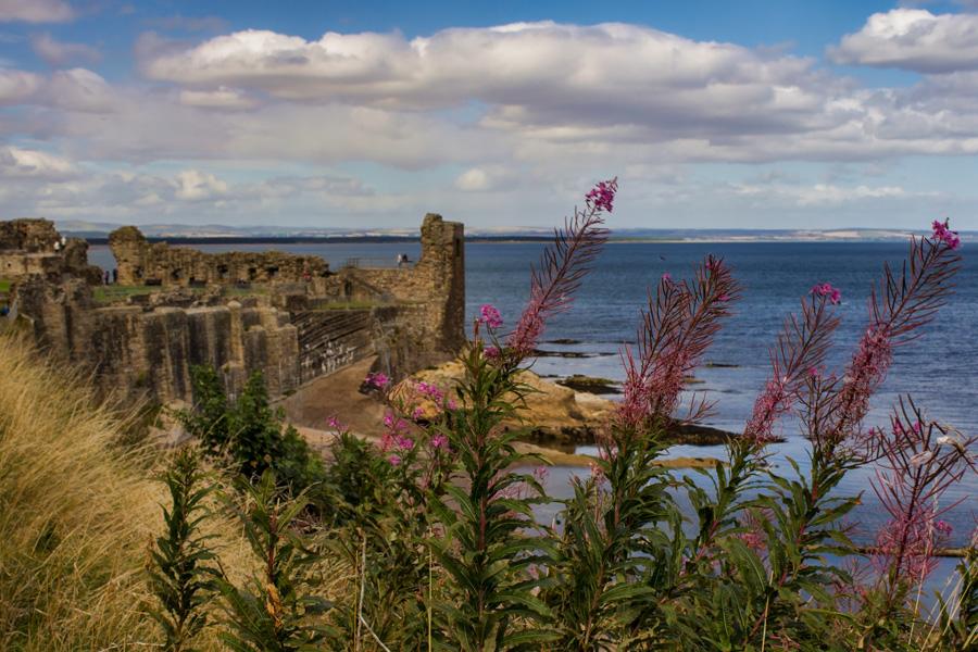 Scotland's Coast