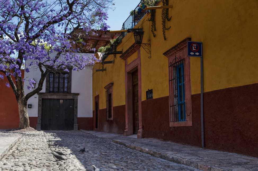 Quiet Corners of San Miguel de Allende
