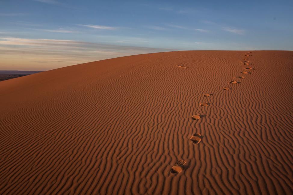 Sahara Morning