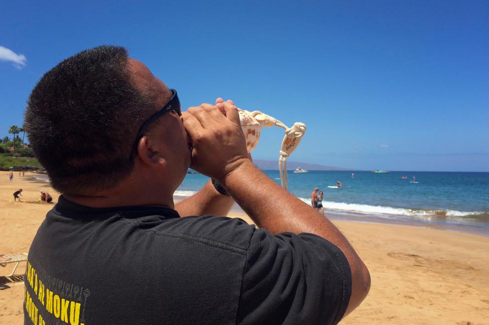 Call to the Sea