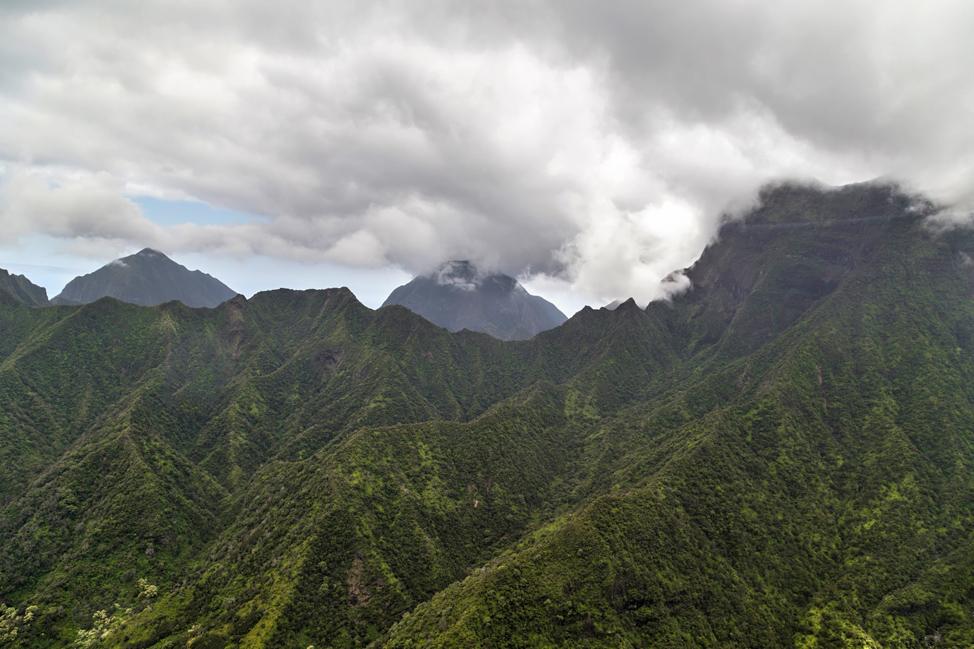 Molokai Ridges