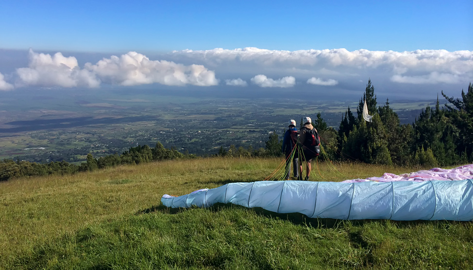 Paragliding for Chickens thumbnail