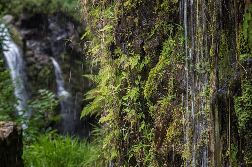 Hana Waterfall Scenery