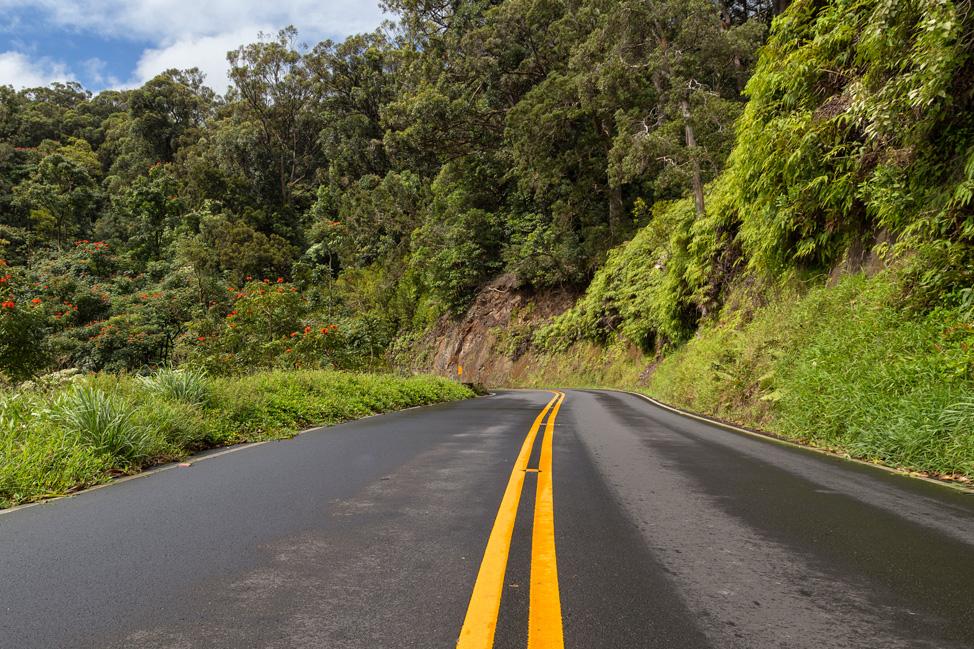The Road to Hana Road