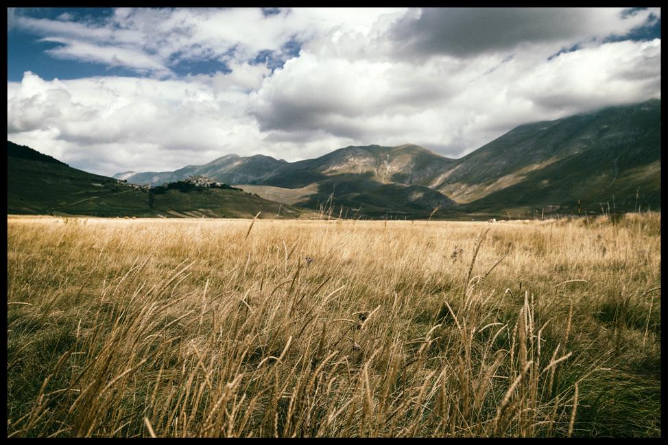 Castellucio Fields