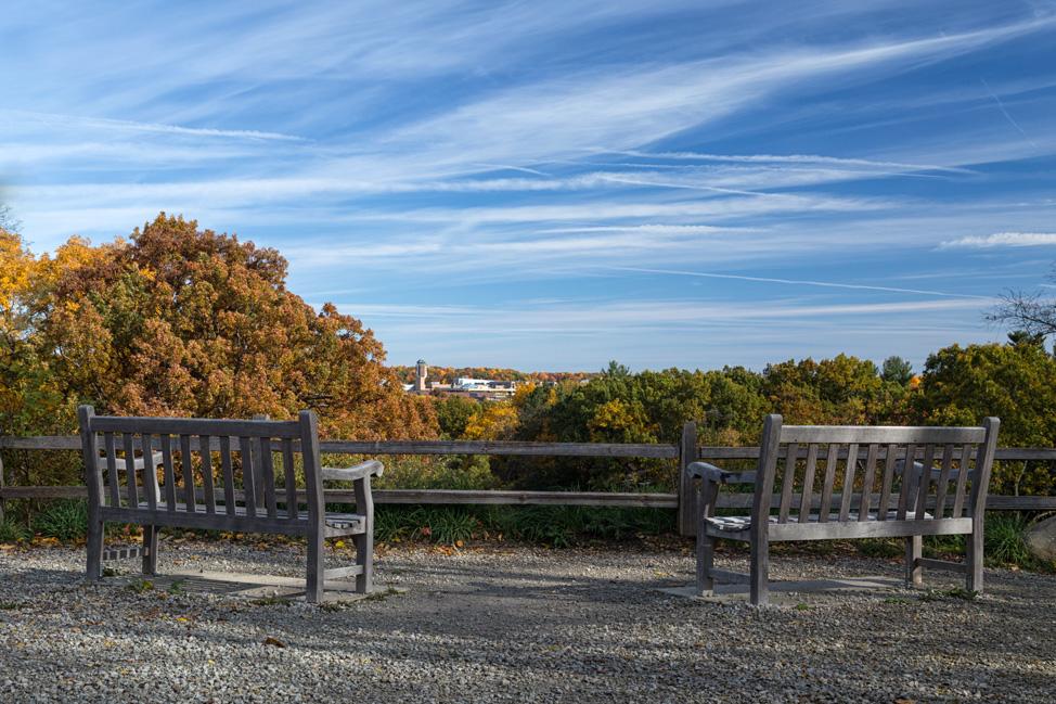 Scenic View Nichols Arboretum