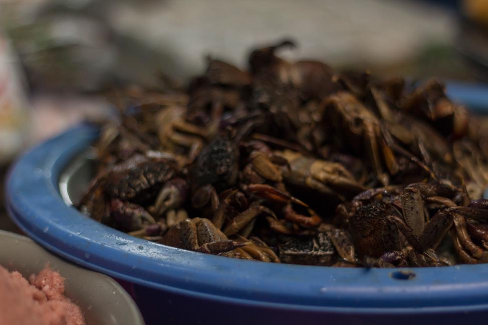 Chiang-Mai-Grandmas-Thai-Recipes-03