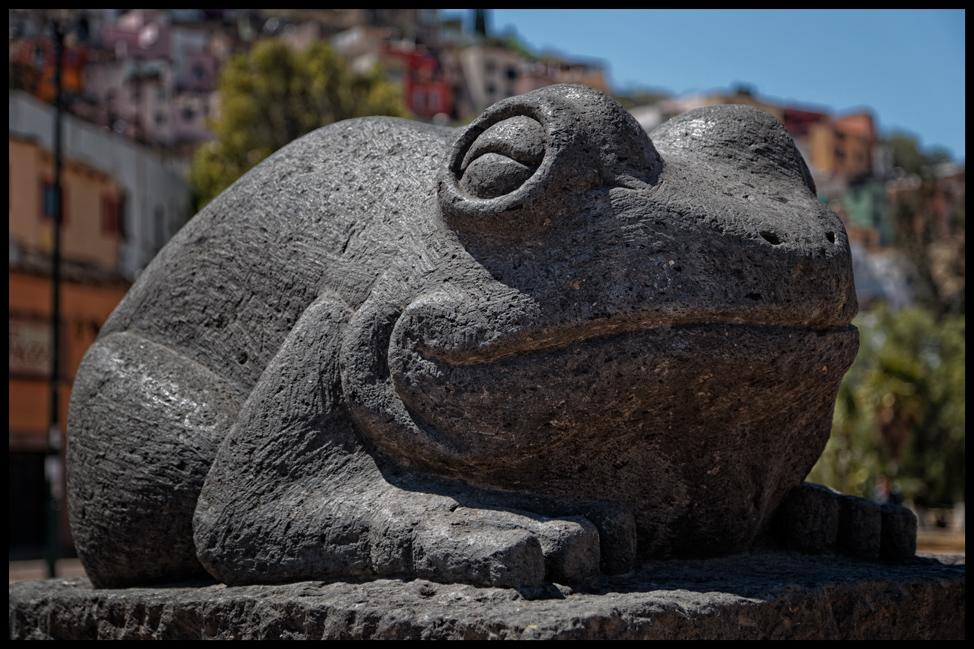 Guanajuato-Frog-Postcard