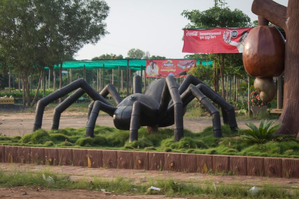 Spiderville-Cambodia-6