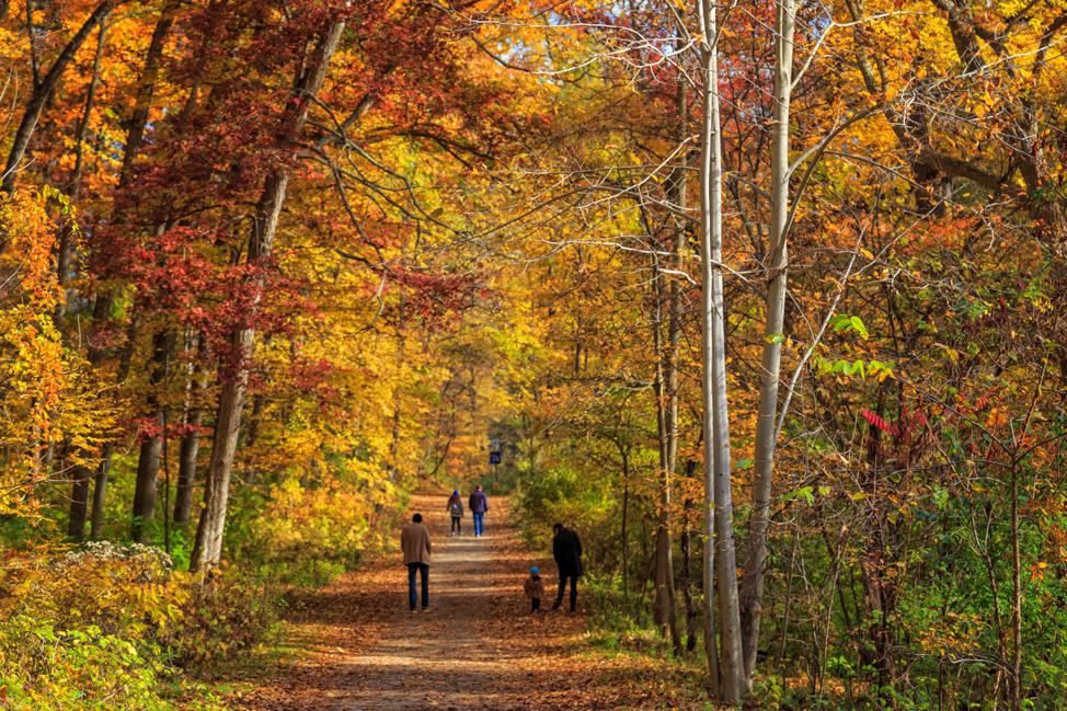 Family Walk Ann Arbor