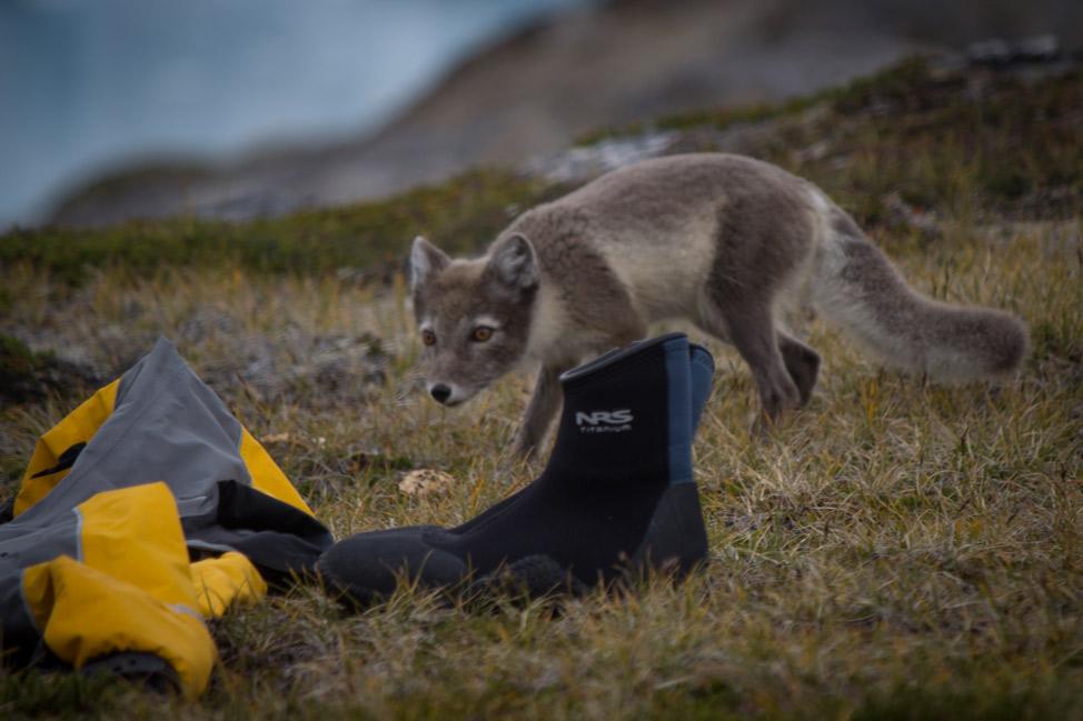 Camp-Life-Greenland-07
