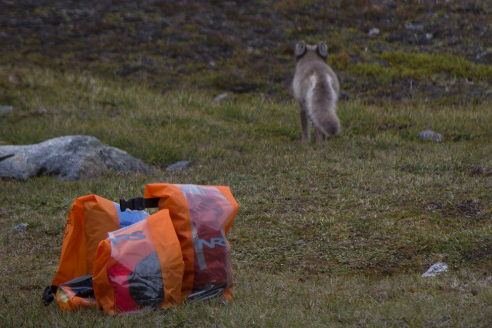 Camp-Life-Greenland-09