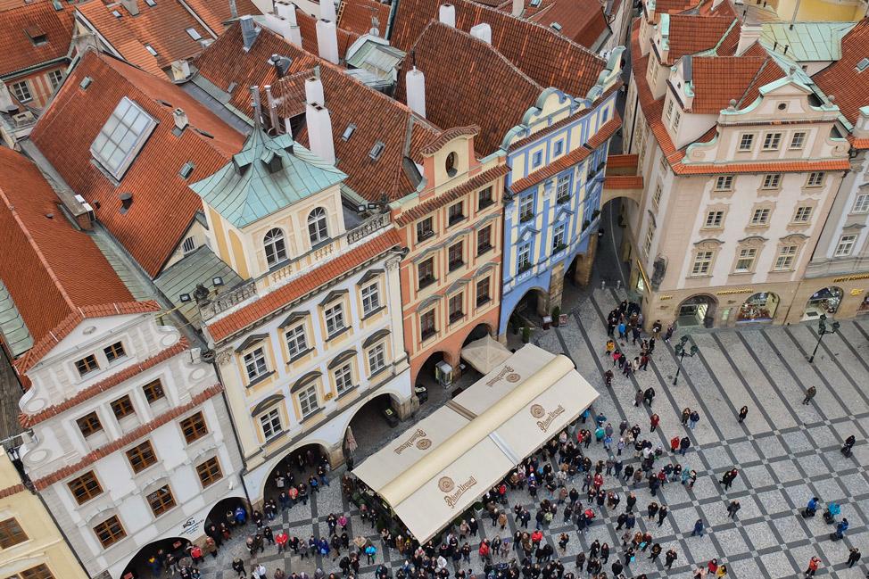 Prague Ants