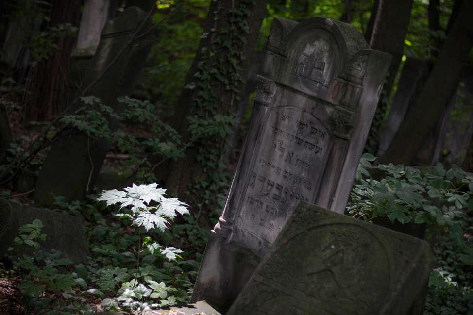 Warsaw-Jewish-Cemetery-05