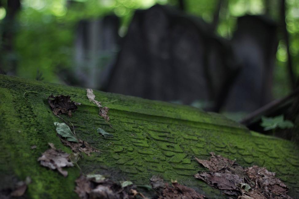 Warsaw-Jewish-Cemetery-06