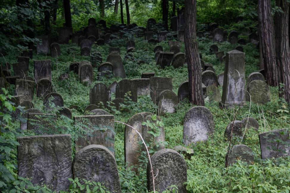 Warsaw-Jewish-Cemetery-12
