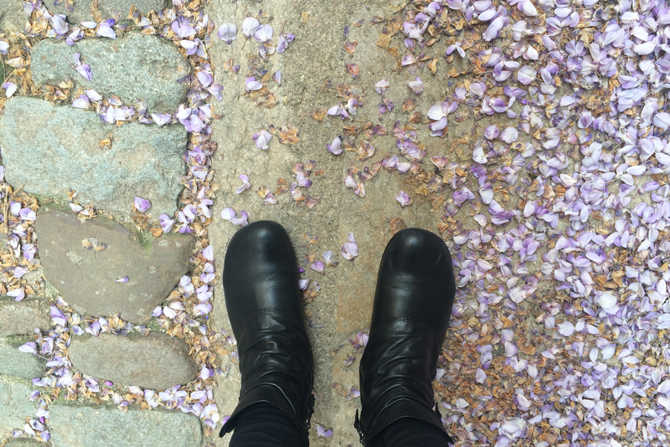 Girona-Spain-Flower-Petals