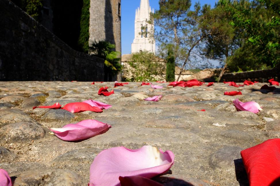 Girona-Spain-Roses