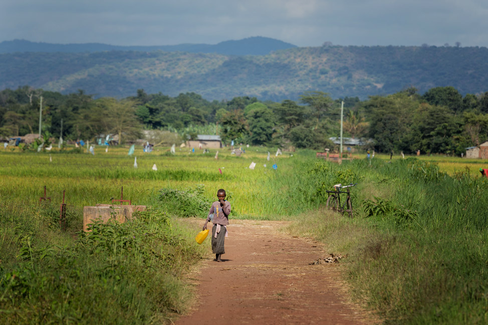 Tanzania Countryside