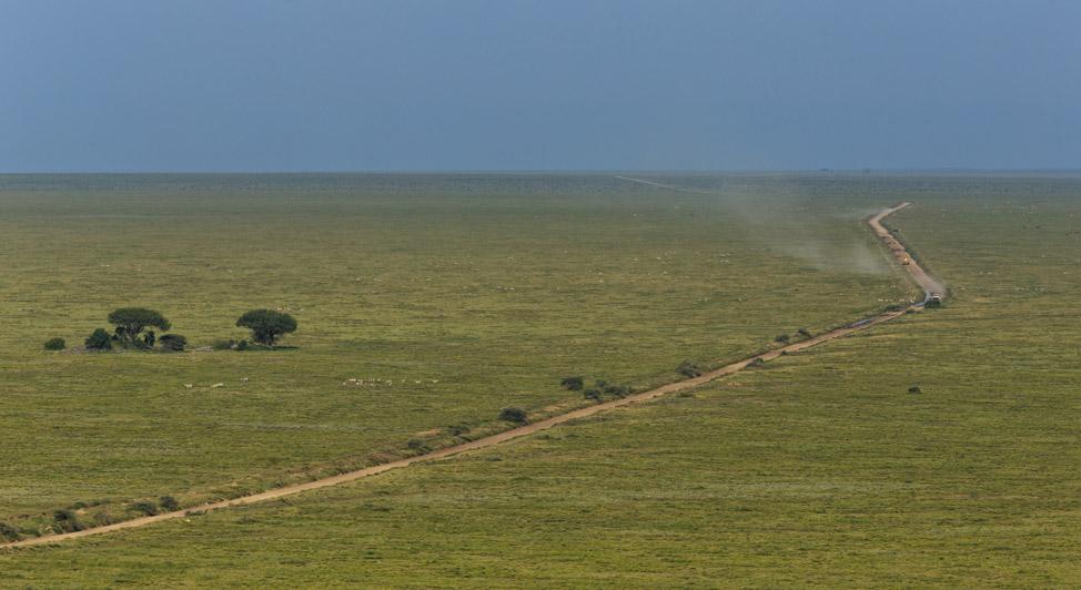 Serengeti Roads
