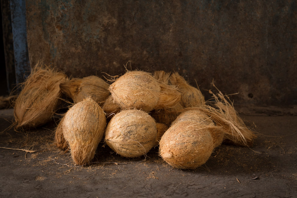 Stone Town Coconuts