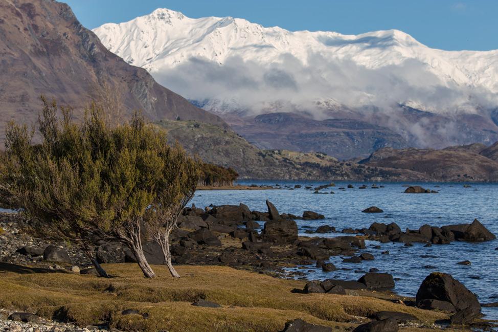Beacon Point Wanaka