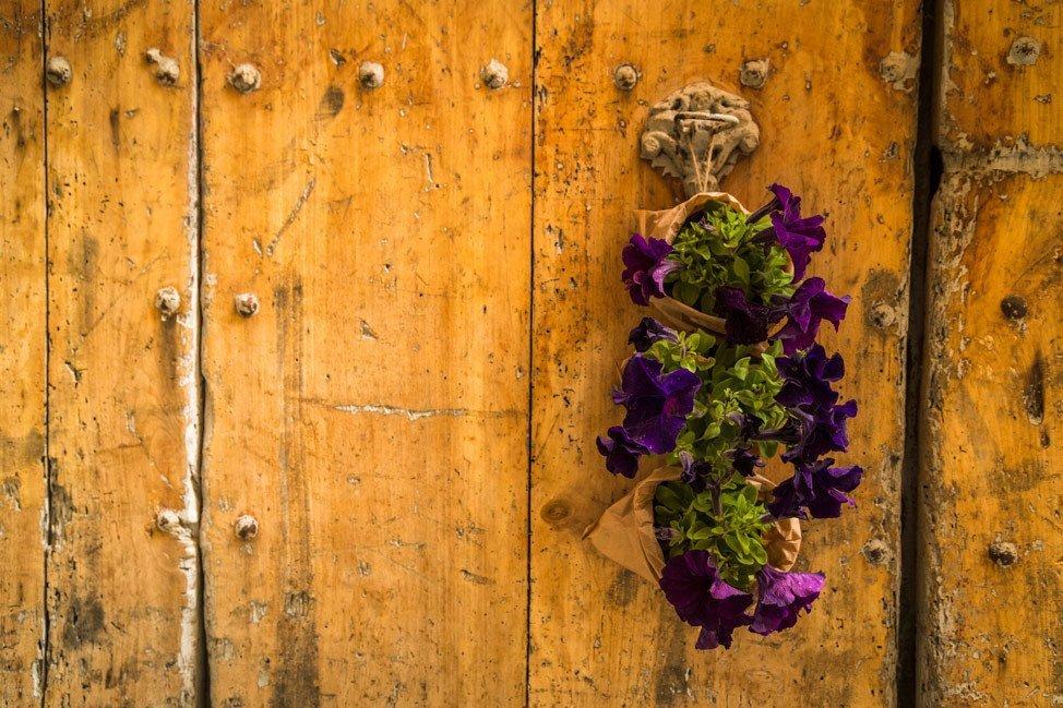 Temps de Flors Door