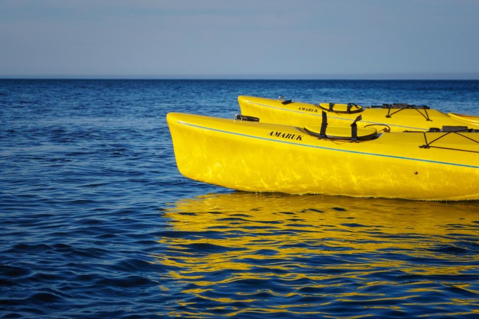 Grand Manan Kayaks