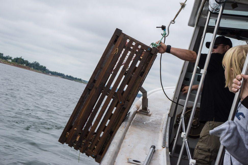 lobster-fishing-boat